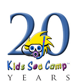 Kids Sea Camp 2020 25th Anniversary