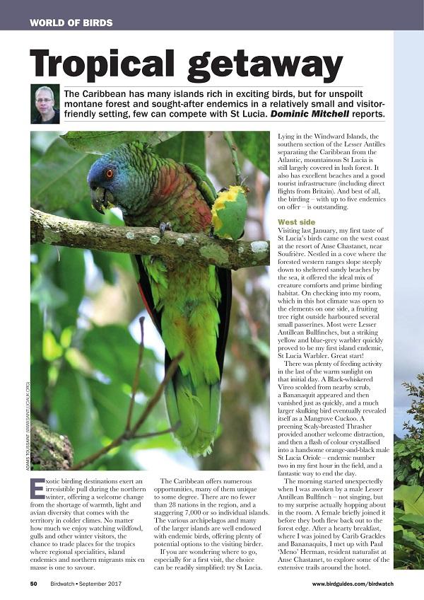 Birdwatch Magazine - September